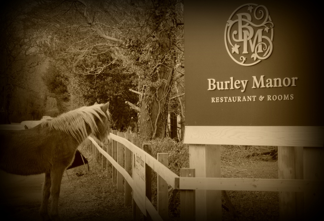 Burley Manor Hotel New Forest