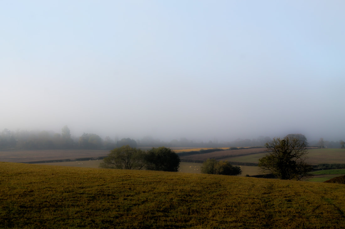 Sunrise fog at Wingbury Farm